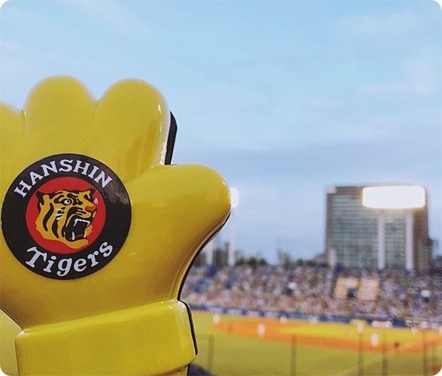 野球観戦コーデ 神宮球場 阪神タイガース